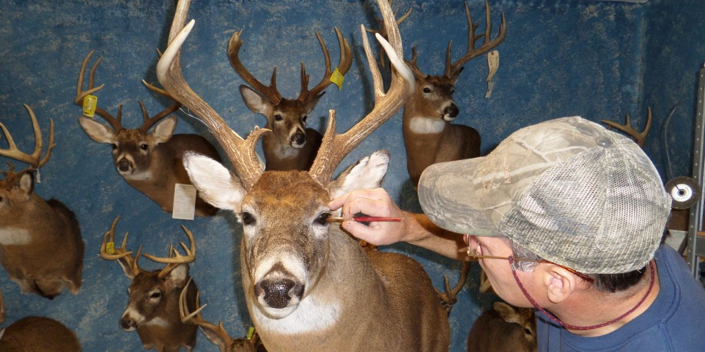 Episode #26: Marc Jordan (Western Pennsylvania School of Taxidermy)