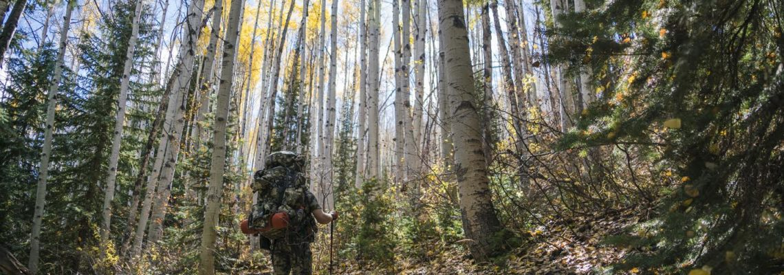 2016 DIY Colorado Backcountry Elk Hunt #1
