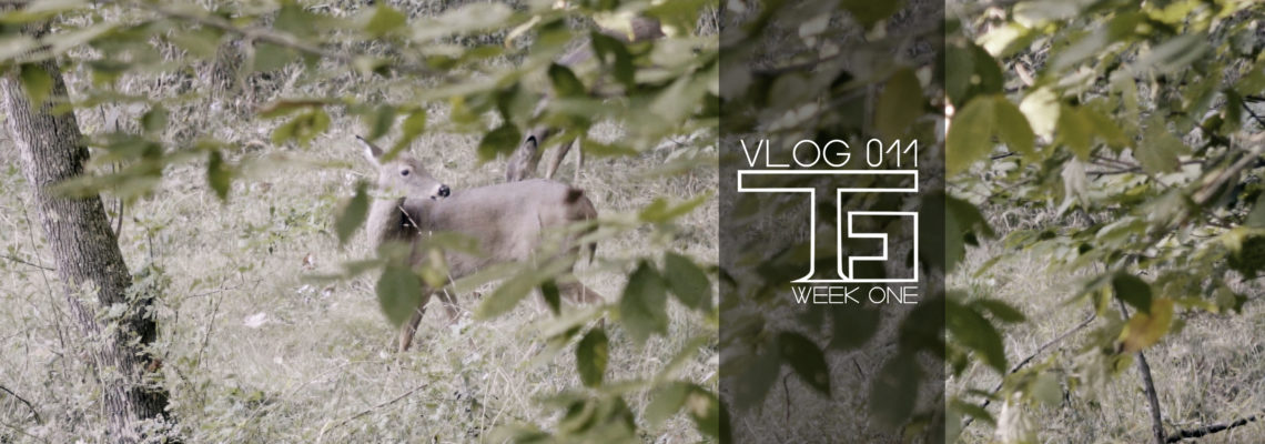 VLOG 011: Week One