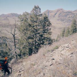 2016 DIY Colorado Backcountry Elk Hunt #3