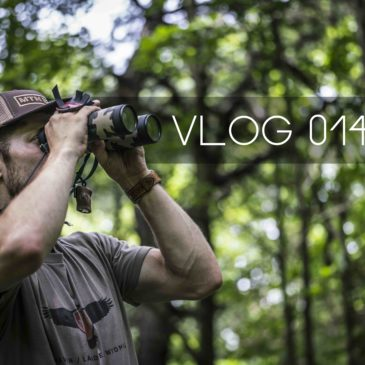 VLOG 014: [Camp] Trail Camera Run