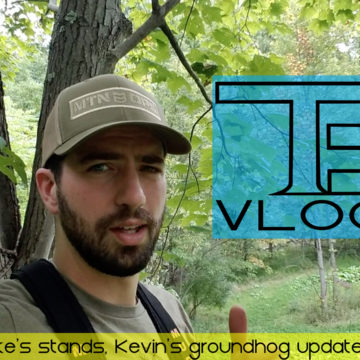 Tradgeeks VLOG: Mike's stands, Kevin's groundhog situation.