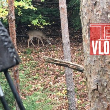 Tradgeeks VLOG: Wet boots, Bucks, and Trad Bows; PA Archery Season continues
