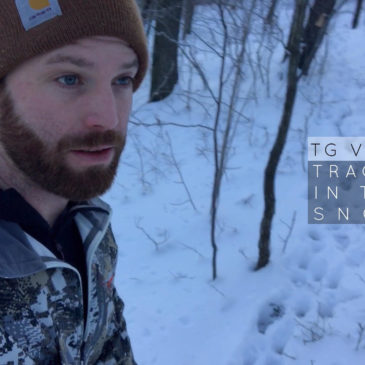 TG VLOG: Tracks in the snow